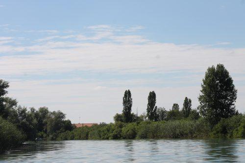 """La viticoltura e i vini lungo la Livenza, """"fiume di sapori""""!"""